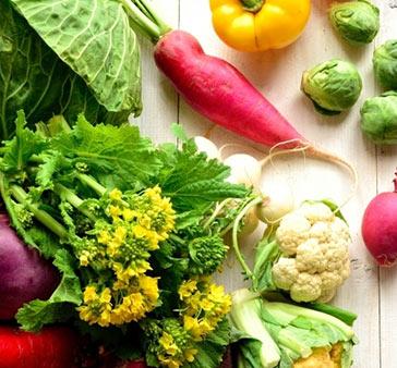 健康な国産野菜
